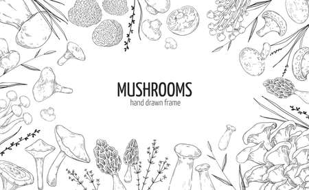 Mushroom frame. Hand drawn engraving borders of vegetable fungus. Natural champignon and shiitake. Gourmet truffle or boletus. Forest plants. Vector black and white package label mockup Illustration