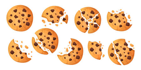 Chocolate chip cookie. Cartoon sweet cake with butter dough. Full and half isolated pastry. Bitten and crushed choco snack. Tasty food pieces and crumbs. Vector confectionery products set Illustration
