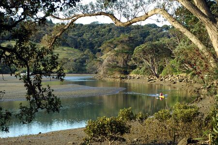 meanders: Kayaking in the meanders of Puhoi river, New Zealand