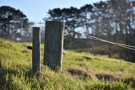 pasture fence: Livestock electric fence – a typical view of New Zealand countryside. Stock Photo