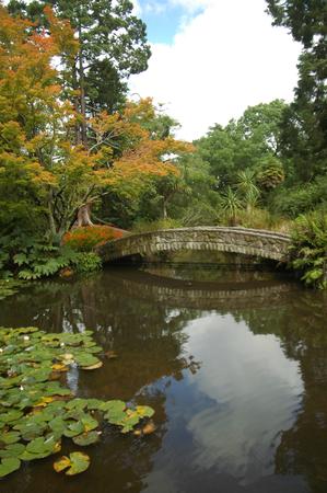 botanic: Stone bridge in botanic garden in Christchurch.