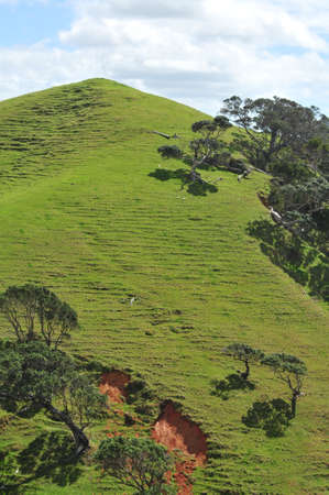 topografia: Erosión - el resultado de la deforestación extensiva para crear más espacio para la agricultura en las áreas con topografía accidentada y una gran cantidad de precipitaciones.