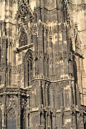 saint stephen cathedral: Wall details of St. Stephens gothic cathedral in Vienna.