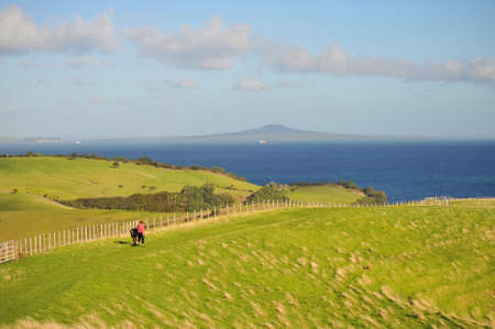 A view of Rangitoto Island from a hill