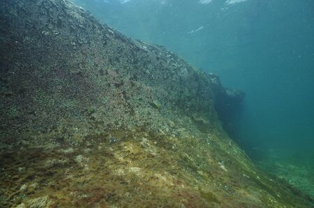 under the surface: Barren rocky reef right under surface. Stock Photo