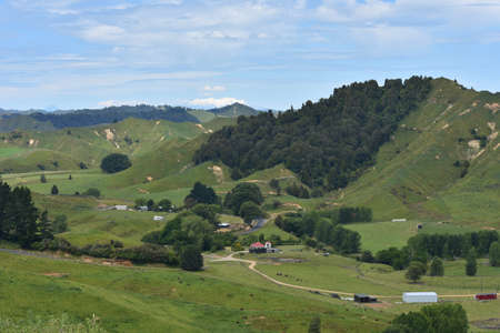 farmlands: Rugged Tarnaki countryside showing farmlands with forest patches in between. Stock Photo