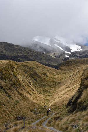 egmont: Footpath through valley above forest level to Mt Egmont in Taranaki.
