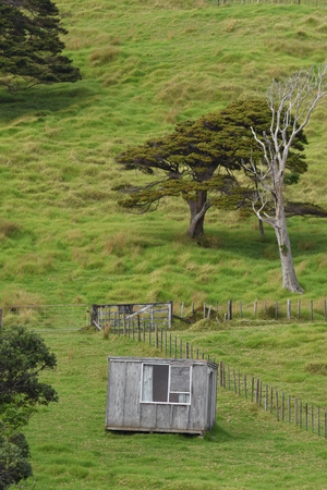ply: Simple wooden cabin on slope with fresh green grass.