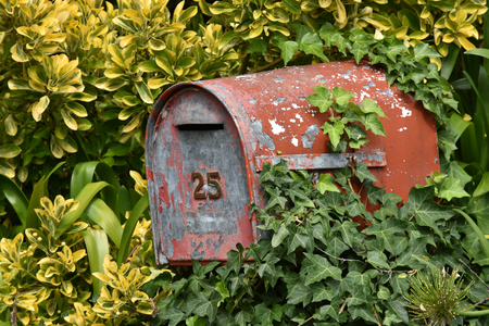 Old metal mailbox with red paint peeling off among greenery.