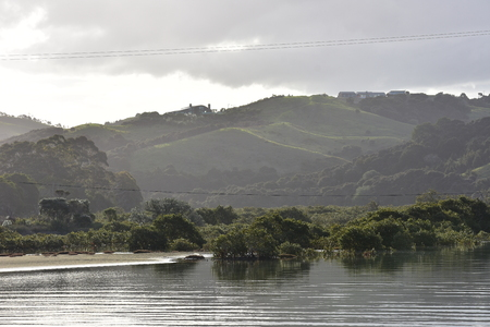Mangroves in very calm estuary with hills covered with mixed vegetation in background. Stock Photo