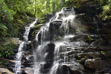 Water cascade in dense forest of Blue Mountains near Katoomba.
