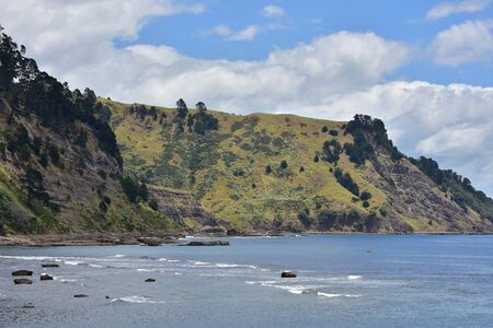 deforested: Deforested coastal cliffs near Leigh in New Zealand prone to serious land slides during periods of rainy weather.