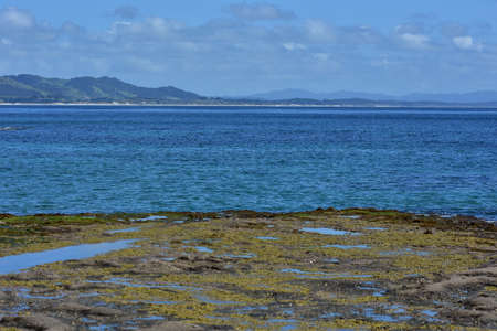 Rocky platforms at low tide with blue sea behind them and coastline in distance. Stock Photo
