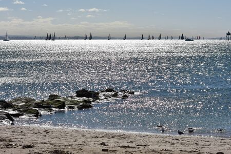 Plenty of sail ships in distance on silver sea watched from sandy shore.