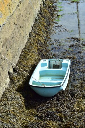 Plastic dinghy tied to stone pier and sitting on seabed covered with brown sea weeds at low tide. Stock Photo