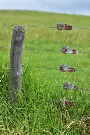 Weathered wooden pole and wires of cattle electric fence with green farmland in background.