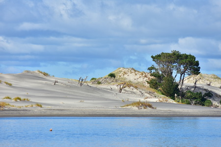Layer of sand dune with patches of recovering low native vegetation and trees in between blue sky and calm water surface reflecting skies. Stock Photo
