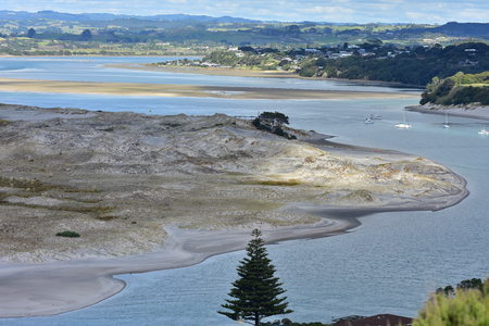 Mangawhai Harbour with sand flats and dunes of fine light gray sand and some native dune weeds.
