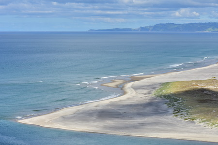 Flat tidal sandy coastal area followed by dune covered with native weeds on coast of New Zealand Northland.