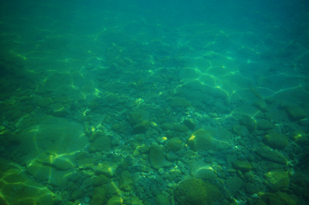 Gravel bottom in shallow green sea with areas of larger rocks and boulders and reflections from surface.