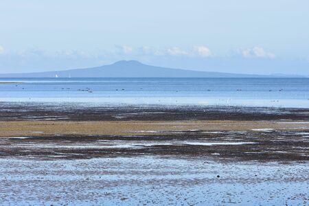 Vista dell'isola del vulcano Rangitoto ad Auckland dalla baia piatta poco profonda con la bassa marea con appartamenti di erba marina dove gli uccelli marini si nutrono di crostacei e altri invertebrati. Archivio Fotografico