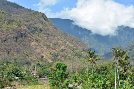 View of flat coastal areas with tropical flora in eastern Bali with volcanic hills in background.