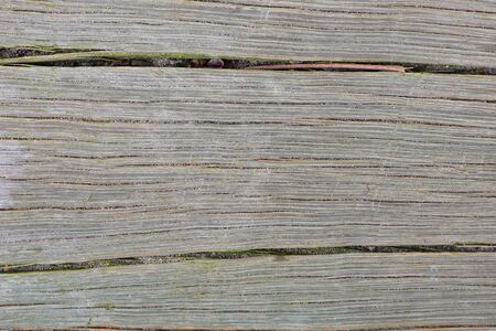 Detail of weathered timber surface with dirt in wood cracks.