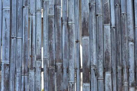 Dense bamboo fence made of thick dried bamboo stick.