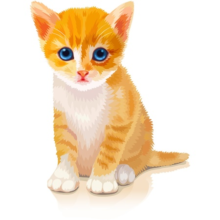 chaton en dessin anim�: adorable chaton orange Illustration