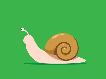 Brown House Snail on the green background Illustration