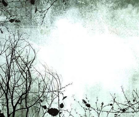 grunge frame with wintry tree silhouettes & subtle lace detail Stock Photo