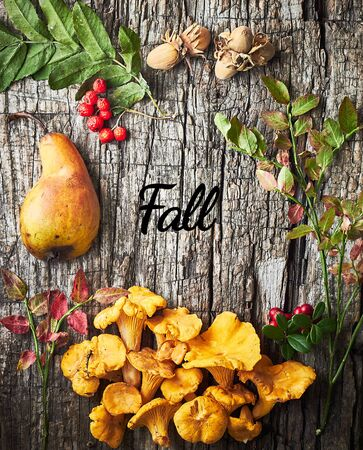 Autumn frame mockup from fall pear, mushrooms, berries, nuts and leaves on old wooden background, flat lay, from above top view, copy empty space, hello autumn seasonal concept