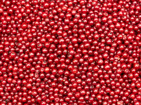 Red currand berries textured background, bright red color natural backdrop for your design, closeup, flat lay, overhead top view from above Standard-Bild