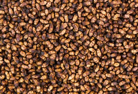 Chufa nut sedge textured background, healthy and fresh harvest of earthnut from above flat lay top view, closeup, vegetarian and organic food concept