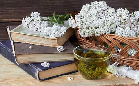 Yarrow herbal healing tea or decoction with fresh milfoil flowers and books nearby on rustic table on wooden background, closeup, copy space, alternative medicinal and naturopathy concept