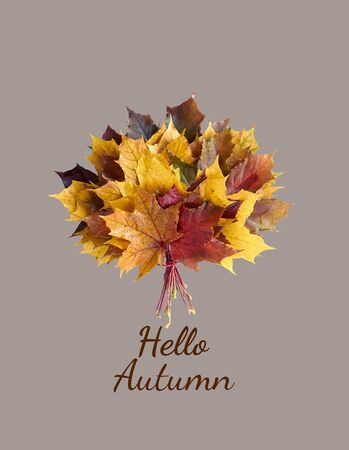 Hello Autumn with maple leaf bouquet isolated on pastel light mint background, flat lay, overhead top view, closeup, copy space, fall and back to school concept Zdjęcie Seryjne