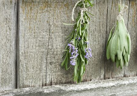 Sage and lavender tufts hanging under the roof and drying on the background of old textured wooden wall, closeup, copy space, agriculture and aroma herbs concept