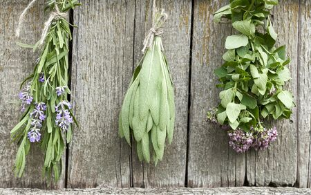 Sage, lavender and oregano tufts hanging under the roof and drying on the background of old textured wooden wall, closeup, copy space, agriculture and aroma herbs concept