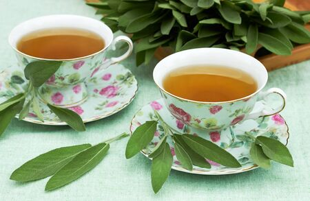 Sage herbal tea in porcelain cups with herb leaves all around on linen textile with a tray full of cut plant in the background, closeup, copy space, herbal  healing aromatic drinks concept Standard-Bild