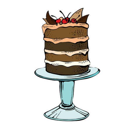 Hand drawn celebration cake. Color vector illustration of a chocolate pie with cherry on a white background