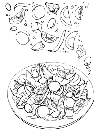 Hand drawn sketch of fresh salad. Organic food. Vegetables with eggs.