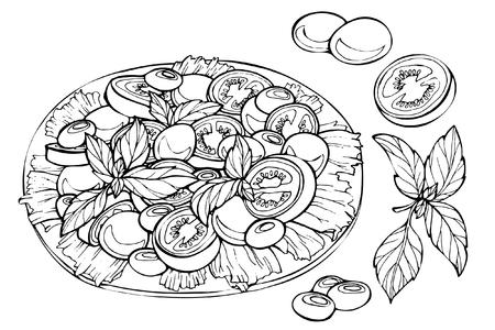 Fresh salad, organic food, vegetables. Hand drawn sketch of fresh salad. Illusztráció