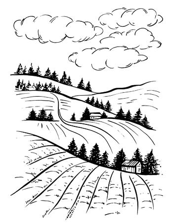 Landscape ink sketch drawing. Rural engraved landscape with plowed fields and pine tree.Countryside landscape with hills, fields, trees.