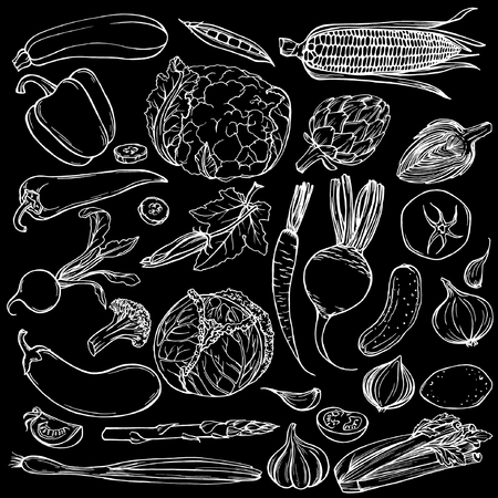 Hand drawn ink sketch. Set of various vegetables. Sketches of different food. Isolated on black