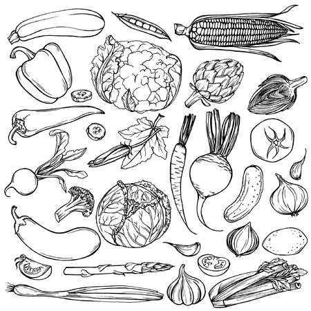 Hand getrokken ink schets. Set van verschillende groenten. Schetsen van ander voedsel. Geïsoleerd op wit