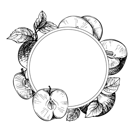 Sketch engraved frame with apples, branch and leaves. Apple fruit. Hand drawn apple. Vintage sketch style round.