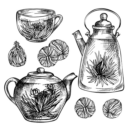 Sketch hand drawn Tea set. Blooming green tea with flowers in glass teapot, glass cup.  Exotic Blooming tea Çizim