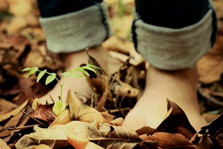 foot steps: Two bare feet stepping on dry leaves.