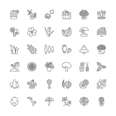 Dünne Linie Symbole gesetzt. Flache Symbole über Blumen, Pflanzen und Bäumen. Standard-Bild - 51653311
