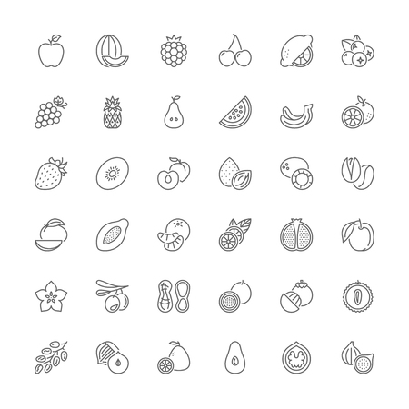 lychee: Thin line icons set. Flat symbols about fruit